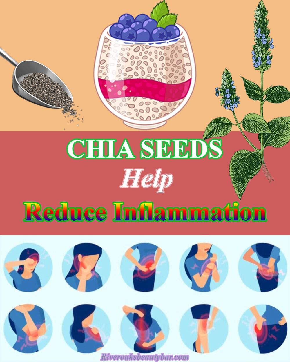 Chia Seeds Help Reduce Inflammation