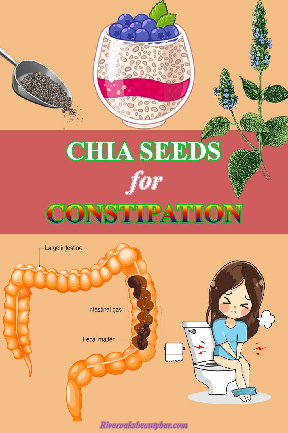 chia seeds for constipation